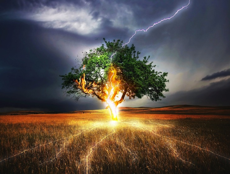 flash lightning tree