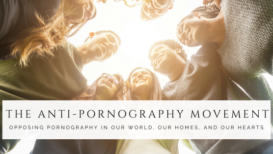 The Anti-Pornography Movement Revised (paid)