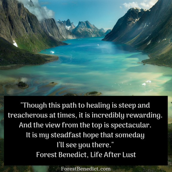 _Though this path to healing is steep and treacherous at times, it is incredibly rewarding. And the view from the top is spectacular. It is my steadfast hope that someday I'll see you there._ -Life After Lust, p 86 (1)