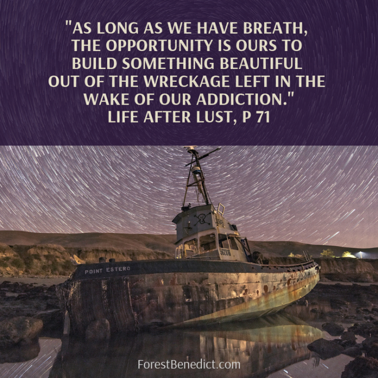 as-long-as-we-have-breath-the-opportunity-is-ours-to-build-something-beautiful-out-of-the-wreckage-left-in-the-wake-of-our-addiction._-life-after-lust-p-71-1